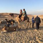 Dave Miller on a Camel